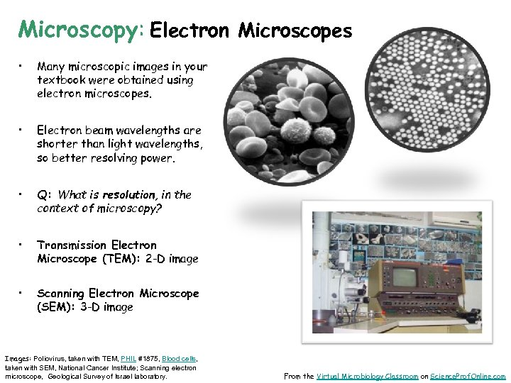 Microscopy: Electron Microscopes • Many microscopic images in your textbook were obtained using electron
