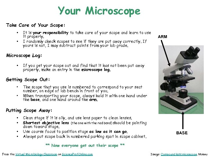 Your Microscope Take Care of Your Scope: • • It is your responsibility to