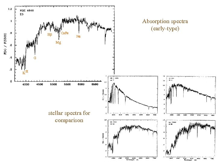 Ca. Fe H Absorption spectra (early-type) Na Mg G KH stellar spectra for comparison