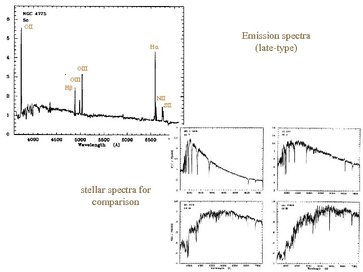 OII H OIII H NII SII stellar spectra for comparison Emission spectra (late-type)