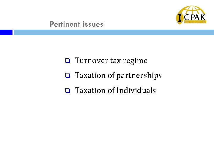 Pertinent issues q Turnover tax regime q Taxation of partnerships q Taxation of Individuals