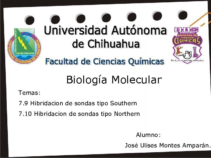 Biología Molecular Temas: 7. 9 Hibridacion de sondas tipo Southern 7. 10 Hibridacion de