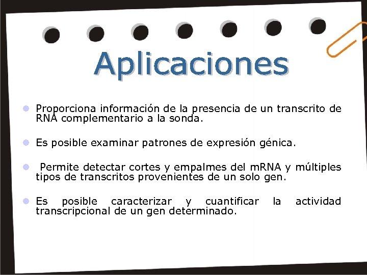 l Proporciona información de la presencia de un transcrito de RNA complementario a la