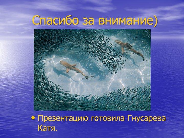 Спасибо за внимание) • Презентацию готовила Гнусарева Катя.