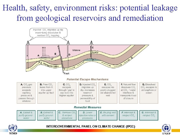 Health, safety, environment risks: potential leakage from geological reservoirs and remediation INTERGOVERNMENTAL PANEL ON