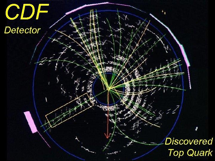 CDF Detector Discovered Top Quark