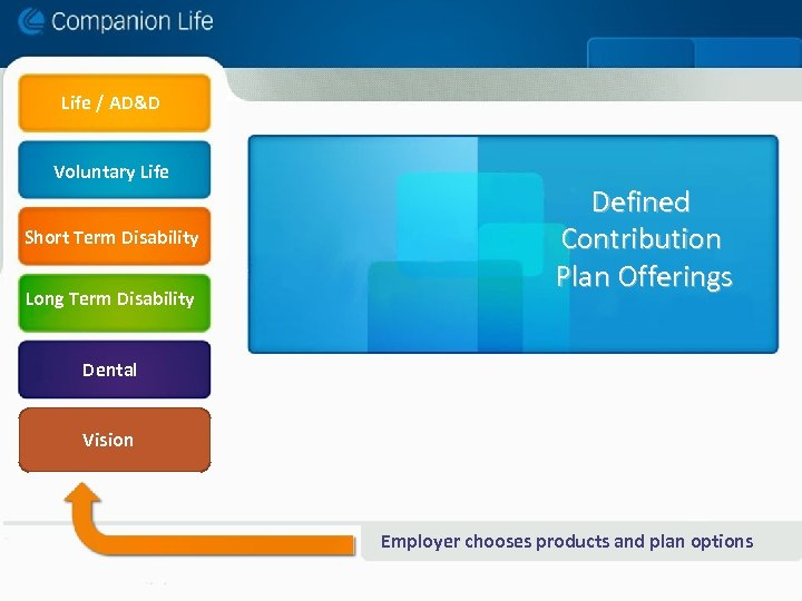 Life / AD&D Voluntary Life Short Term Disability Long Term Disability Defined Contribution Plan