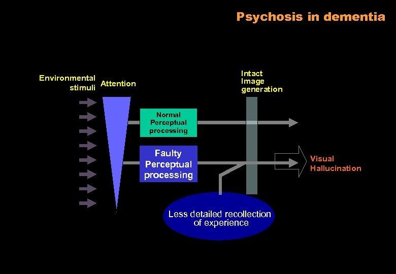 Psychosis in dementia Intact Image generation Environmental stimuli Attention Normal Perceptual processing Faulty Perceptual