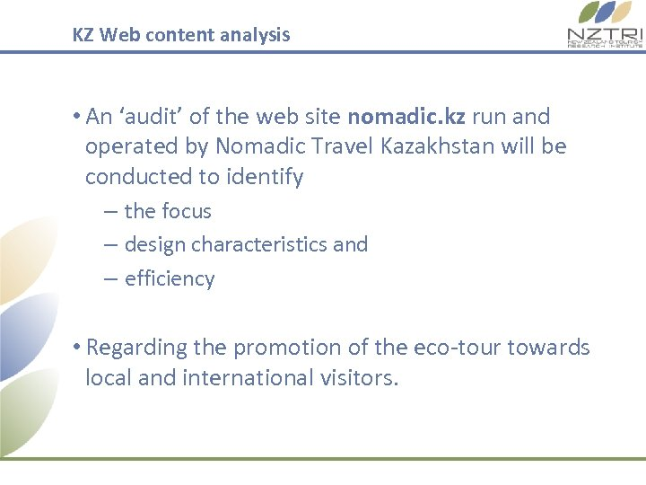 KZ Web content analysis • An 'audit' of the web site nomadic. kz run