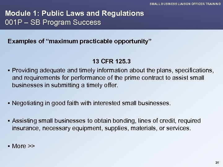 SMALL BUSINESS LIAISON OFFICER TRAINING Module 1: Public Laws and Regulations 001 P –