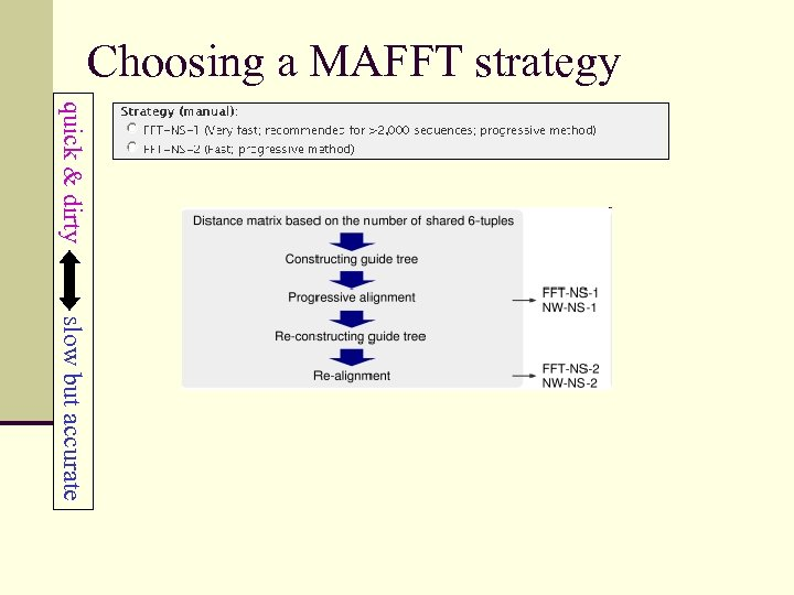 Choosing a MAFFT strategy quick & dirty slow but accurate
