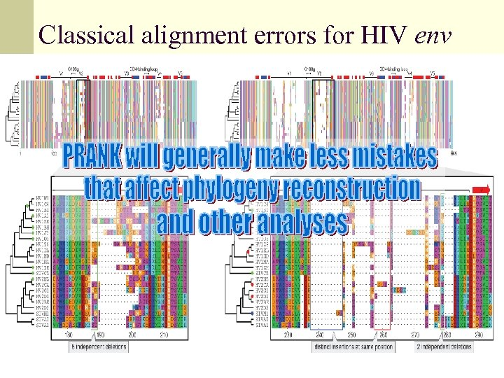 Classical alignment errors for HIV env
