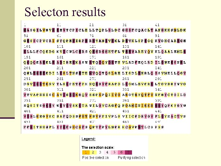 Selecton results