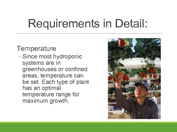 Requirements in Detail: Temperature ◦ Since most hydroponic systems are in greenhouses or confined