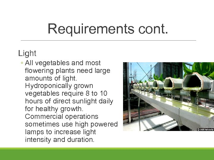 Requirements cont. Light ◦ All vegetables and most flowering plants need large amounts of