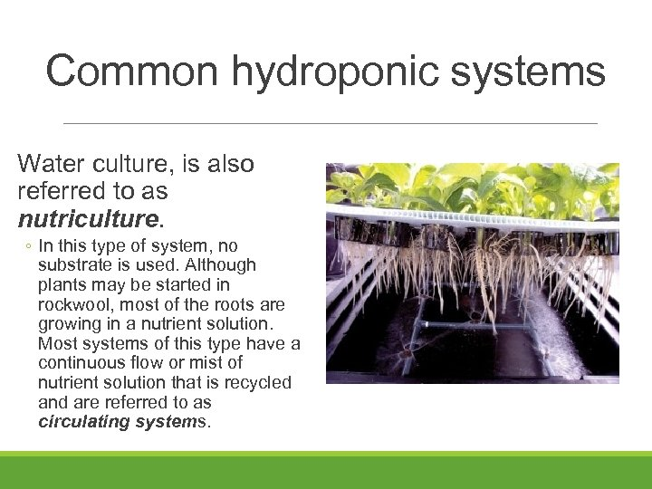 Common hydroponic systems Water culture, is also referred to as nutriculture. ◦ In this