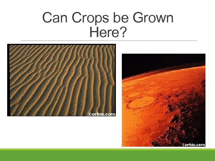 Can Crops be Grown Here?