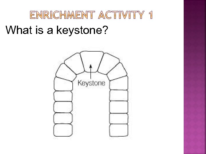 What is a keystone?