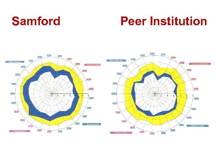 Samford Peer Institution