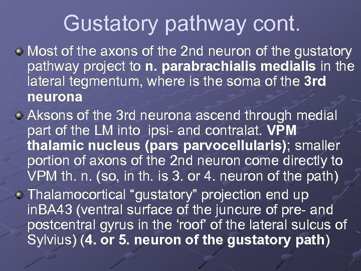 Gustatory pathway cont. Most of the axons of the 2 nd neuron of the