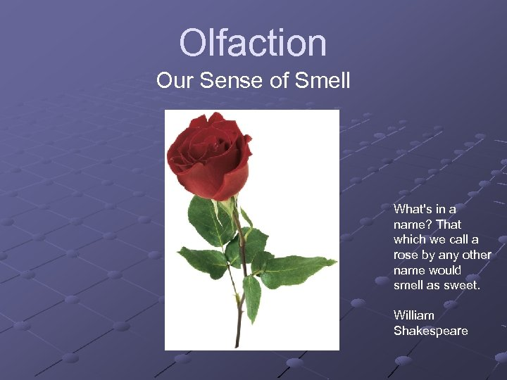 Olfaction Our Sense of Smell What's in a name? That which we call a