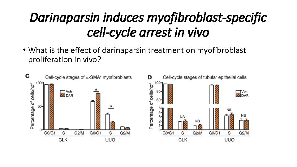 Darinaparsin induces myofibroblast-specific cell-cycle arrest in vivo • What is the effect of darinaparsin