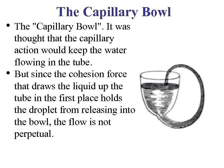 The Capillary Bowl • The