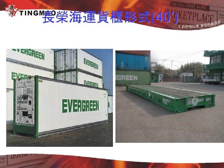 長榮海運貨櫃形式(40')