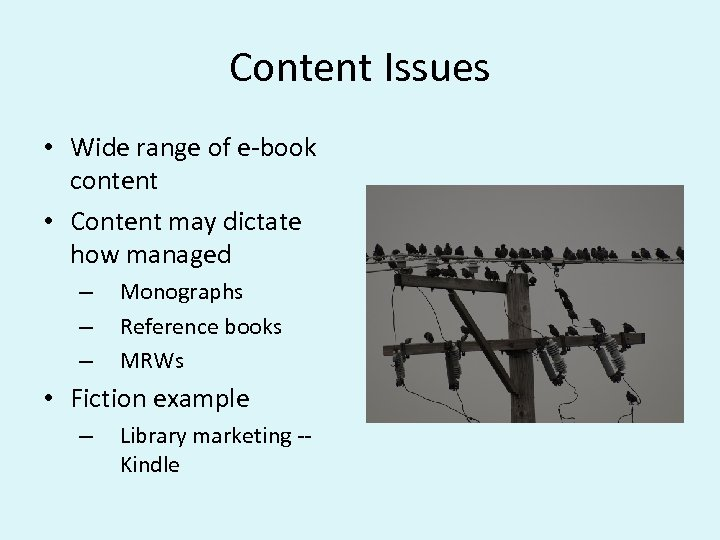Content Issues • Wide range of e-book content • Content may dictate how managed