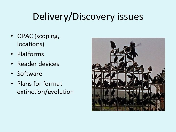 Delivery/Discovery issues • OPAC (scoping, locations) • Platforms • Reader devices • Software •