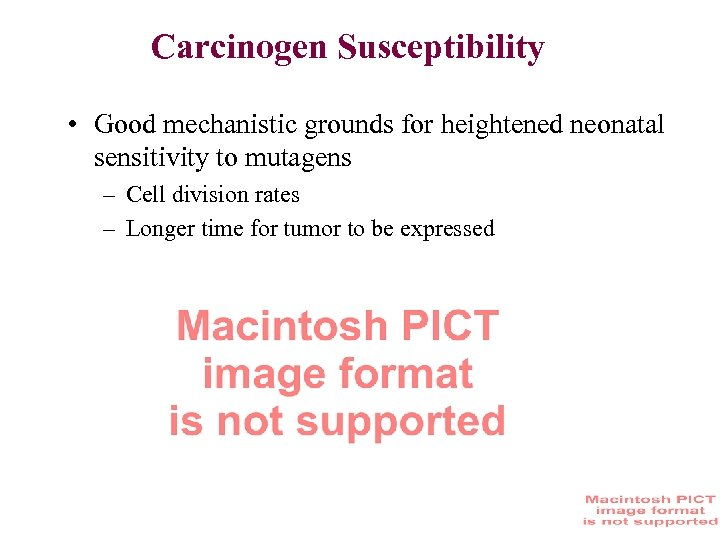 Carcinogen Susceptibility • Good mechanistic grounds for heightened neonatal sensitivity to mutagens – Cell