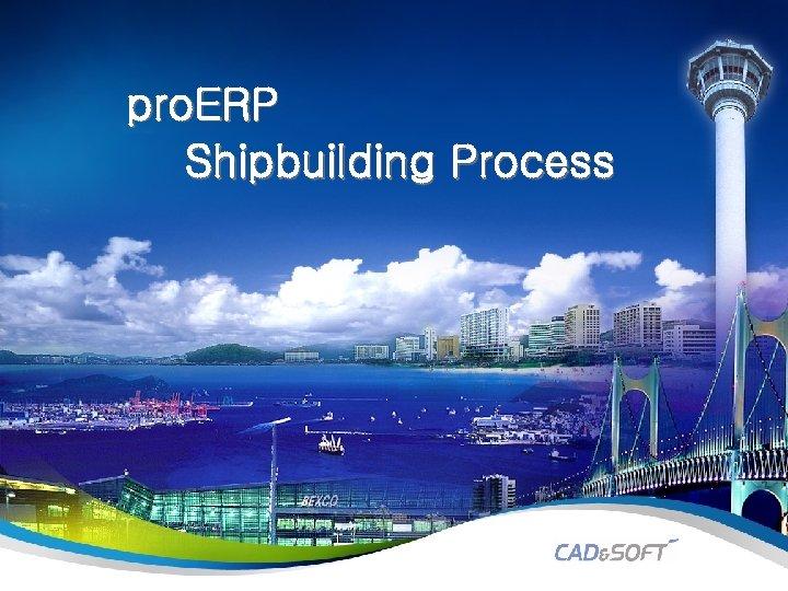 pro. ERP Shipbuilding Process