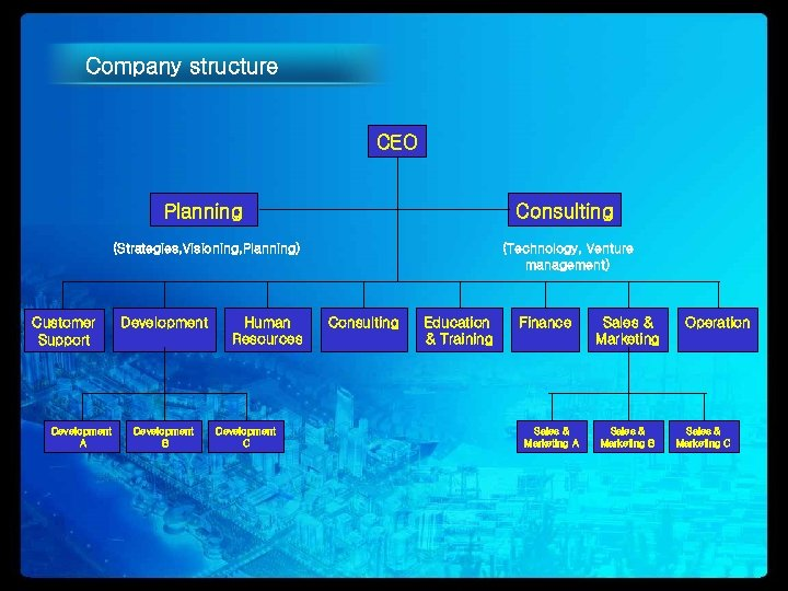 Company structure CEO Planning (Strategies, Visioning, Planning) Customer Support Development A Consulting (Technology, Venture