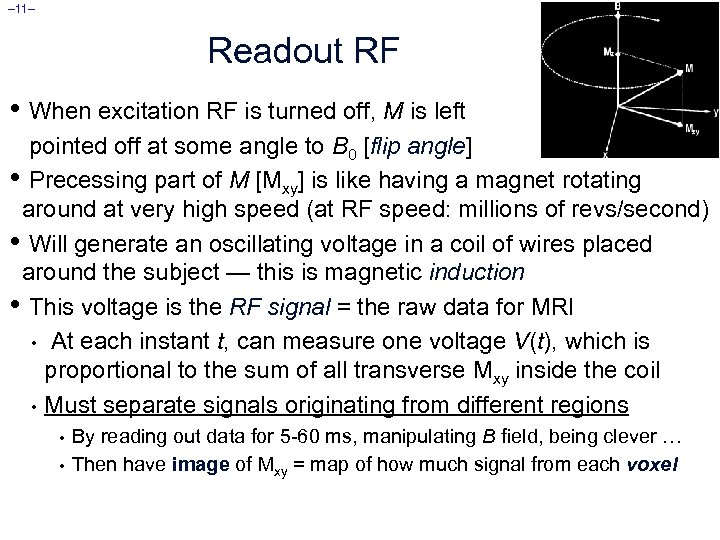 – 11– Readout RF • When excitation RF is turned off, M is left