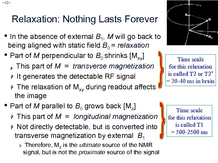 – 12– Relaxation: Nothing Lasts Forever • In the absence of external B 1,