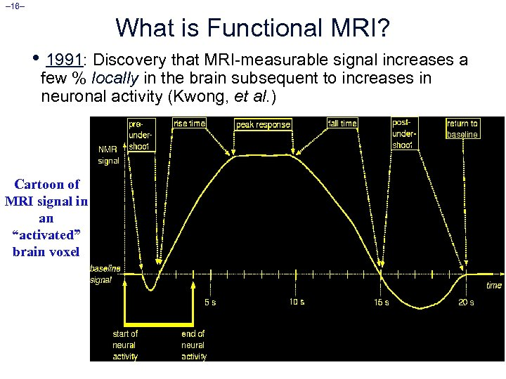 – 16– What is Functional MRI? • 1991: Discovery that MRI-measurable signal increases a