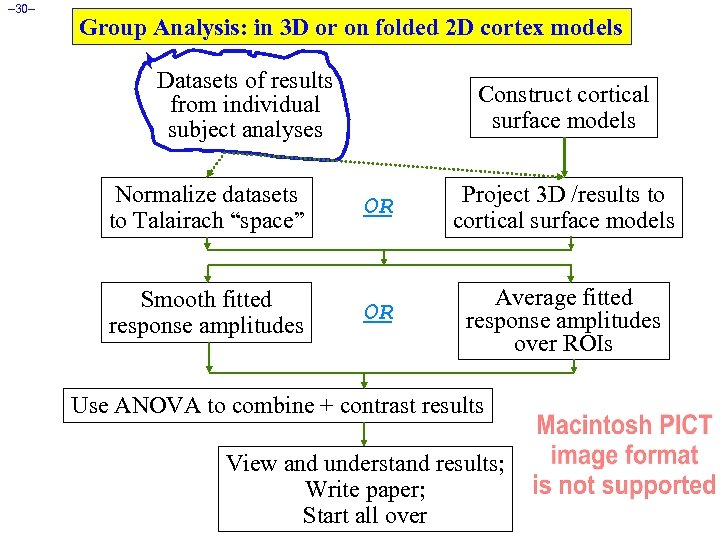 – 30– Group Analysis: in 3 D or on folded 2 D cortex models