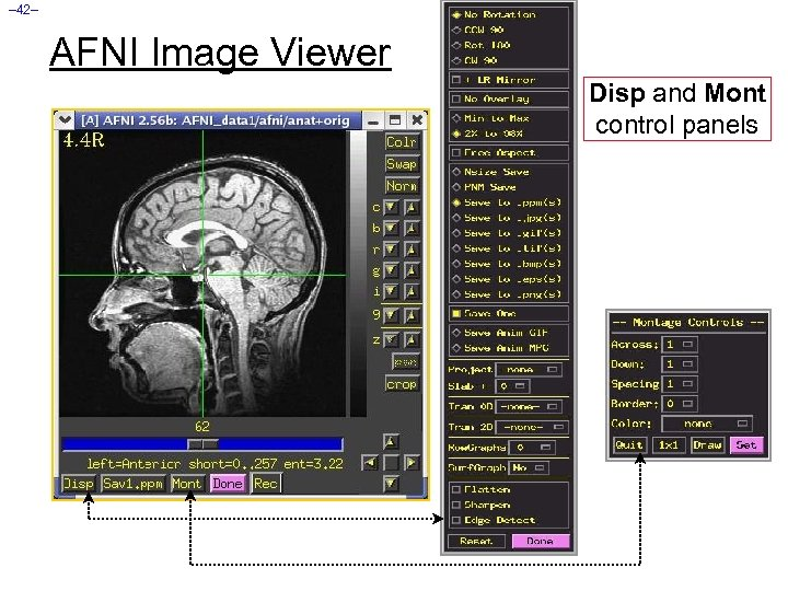 – 42– AFNI Image Viewer Disp and Mont control panels