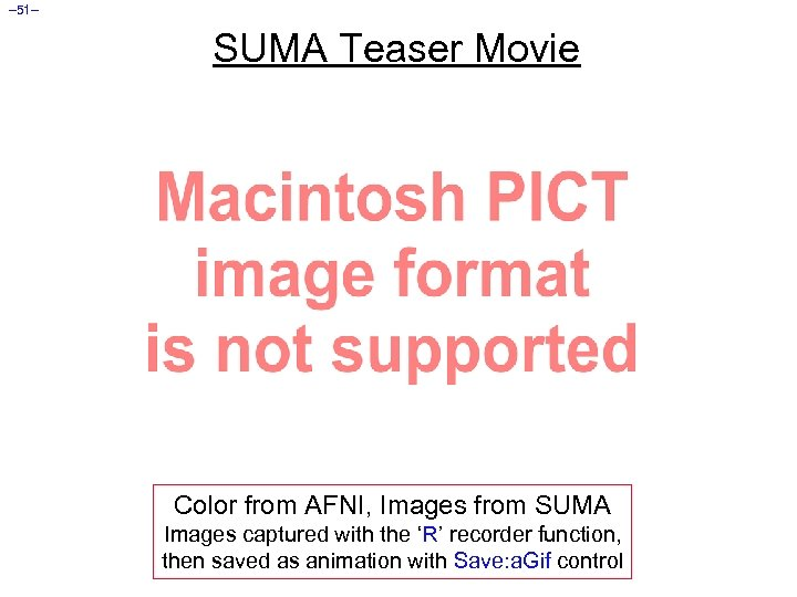 – 51– SUMA Teaser Movie Color from AFNI, Images from SUMA Images captured with