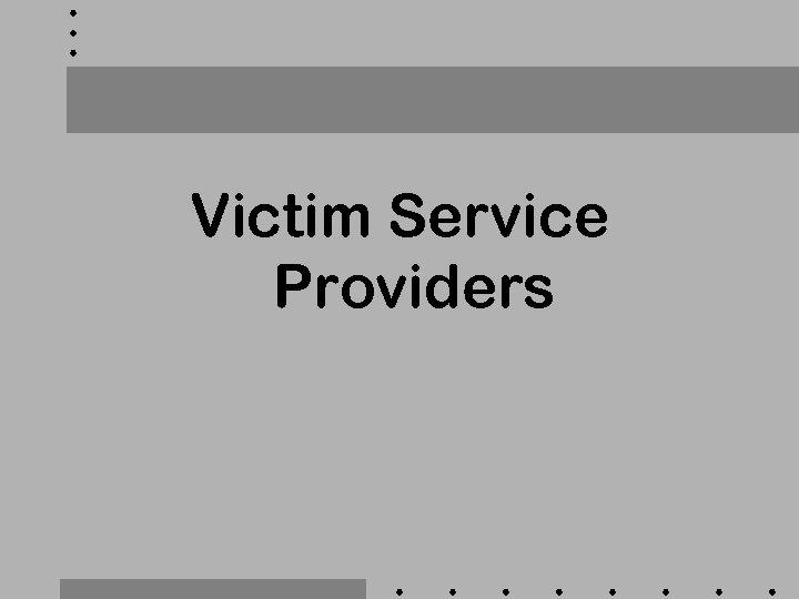 Victim Service Providers