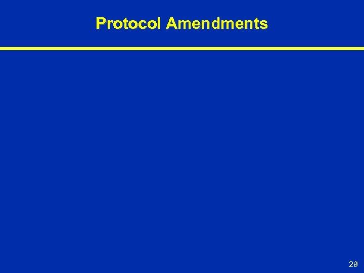 Protocol Amendments 29