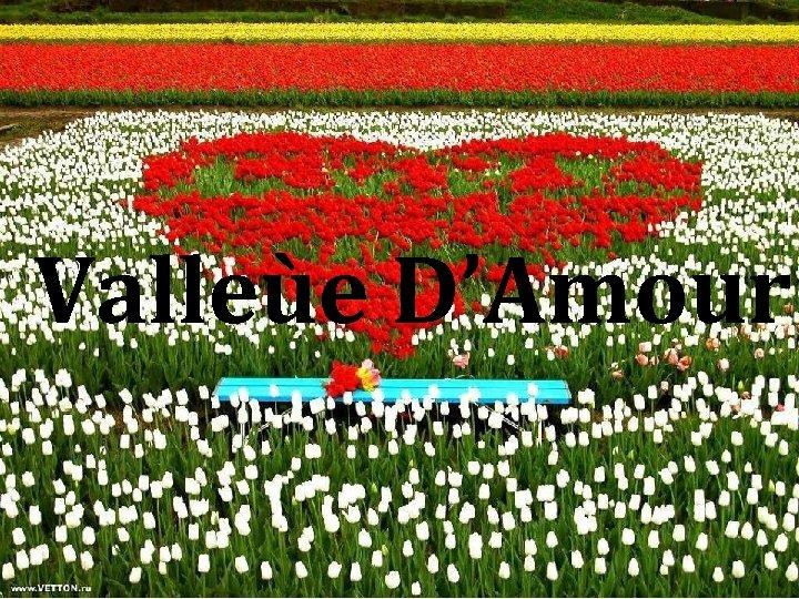 Valleùe D'Amour
