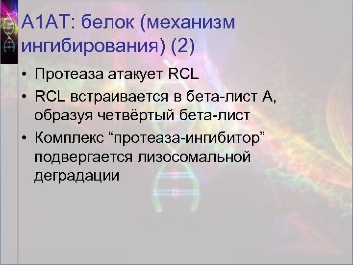 А 1 АТ: белок (механизм ингибирования) (2) • Протеаза атакует RCL • RCL встраивается