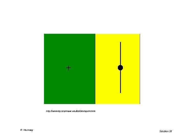 http: //serendip. brynmawr. edu/bb/blindspot 4. html R. Hornsey Solution 26