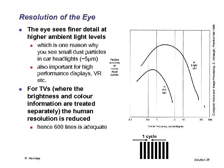 n The eye sees finer detail at higher ambient light levels n n n