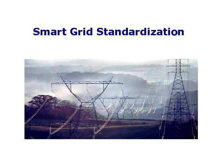 Smart Grid Standardization