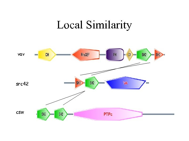 Local Similarity vav src 42 csw