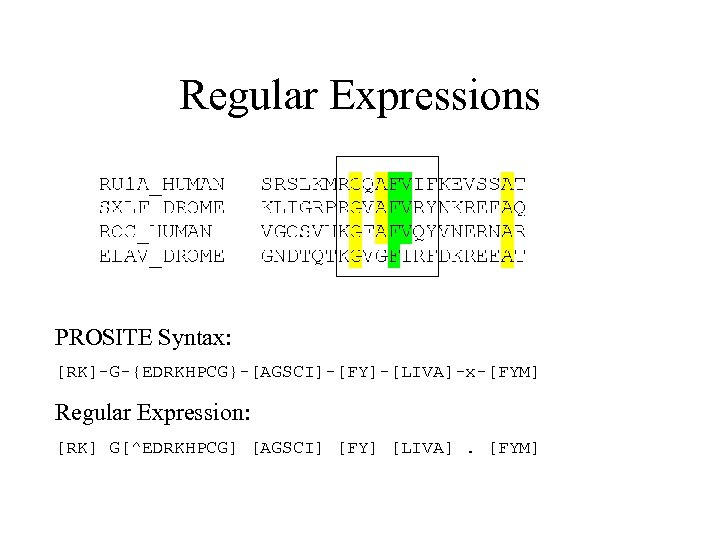 Regular Expressions PROSITE Syntax: [RK]-G-{EDRKHPCG}-[AGSCI]-[FY]-[LIVA]-x-[FYM] Regular Expression: [RK] G[^EDRKHPCG] [AGSCI] [FY] [LIVA]. [FYM]