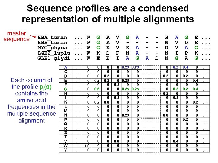Sequence profiles are a condensed representation of multiple alignments master sequence HBA_human HBB_human MYG_phyca