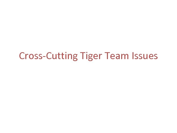 Cross-Cutting Tiger Team Issues